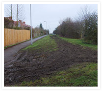 Bedlam Lane - Image01